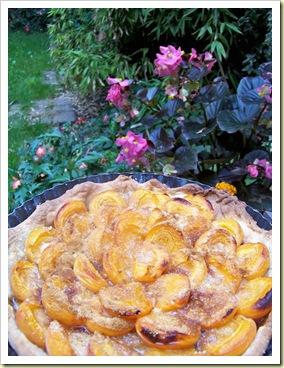 tarte abricots2