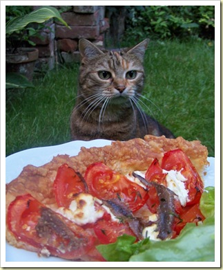 tarte tomate anchois chevre miette