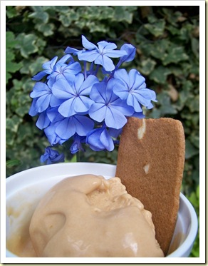 glace aux speculoos