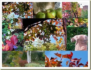 mosaique automne 2