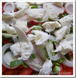 tarte tomates oignons mozza crue
