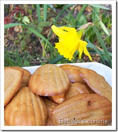 fausses madeleines orange noisette2