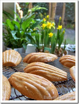 fausses madeleines orange noisette3