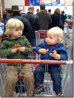 costco_photo_line