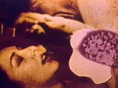 Carolee Schneemann, Fuses, 1964