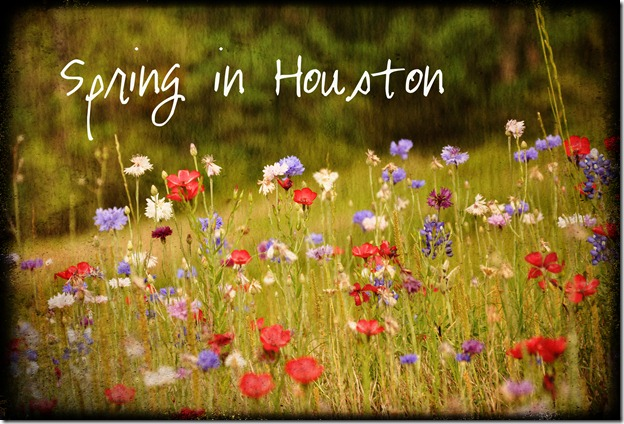 Spring in Houston