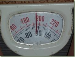 P1030543