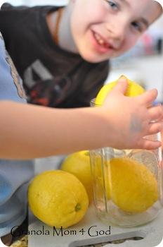 preserving lemons 001