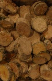 http://lh4.ggpht.com/_t_ujyXPvS2U/TPK7MVWEl4I/AAAAAAAAAPs/6Ddw0QHautw/Zuchini_Lebensmittelindustrie_klein.jpg