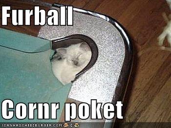 furball cornr poket