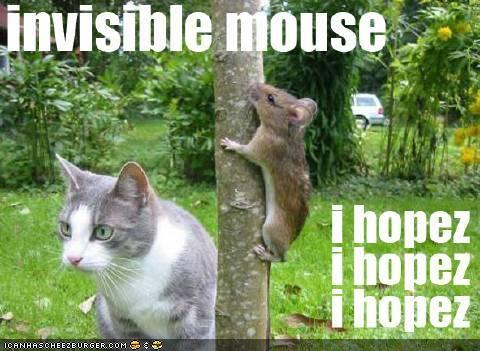 invisible mouse i hopez i hopez i hopez