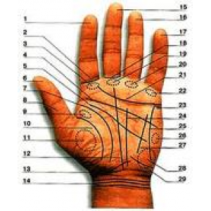 Palmistry Faq Cover