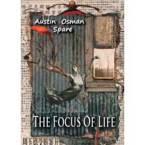 The Focus Of Life Cover