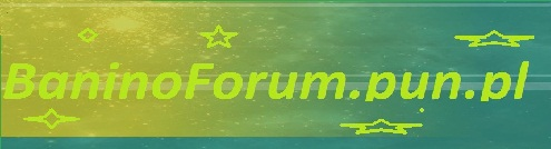 Forum Miejscowo�ci Banino