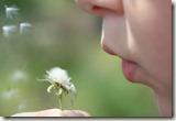 blowing-dandelions