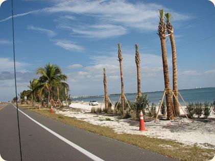 Ft. Myers & Sanibel Island 042
