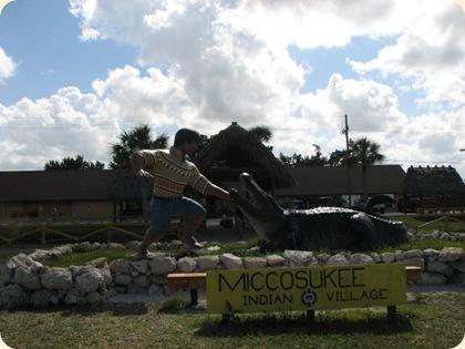Everglades Highway 042