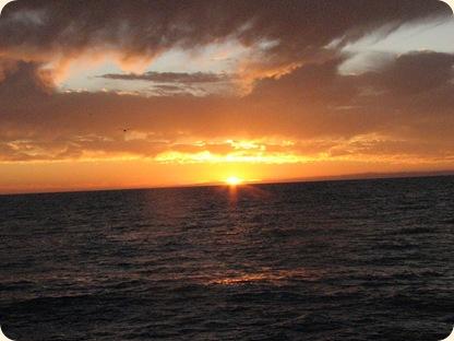 Sunsets 052