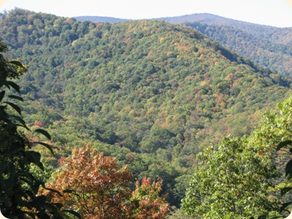 Cherohala Skyway & Dragon's Tail Hwy 103