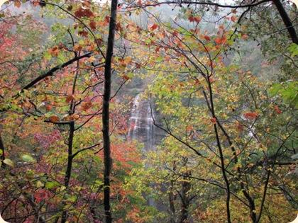 Fall Creek Falls SP 094