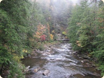 Fall Creek Falls SP 114