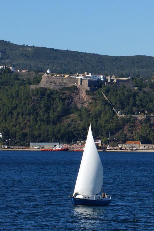 Velas no Rio Sado, Castelo de São Felipe ao fundo.