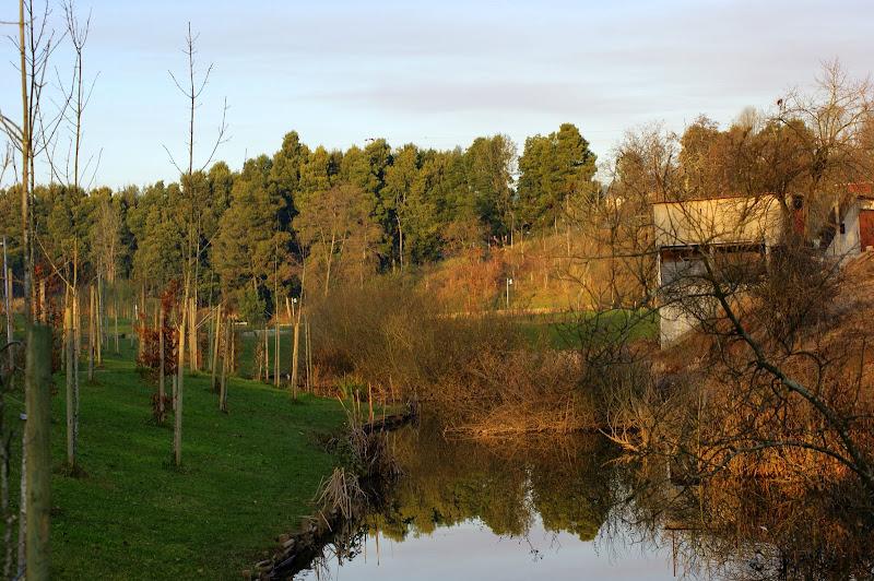 Reflexos do rio Ul