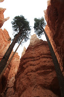 BryceCanyonNP_20100818_0303.JPG Photo