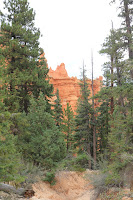 BryceCanyonNP_20100818_0179.JPG Photo