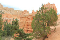 BryceCanyonNP_20100818_0180.JPG Photo