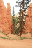 BryceCanyonNP_20100818_0151.JPG Photo