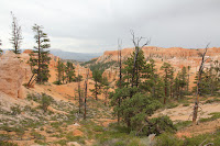 BryceCanyonNP_20100818_0127.JPG Photo