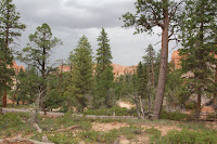 BryceCanyonNP_20100818_0093.JPG Photo