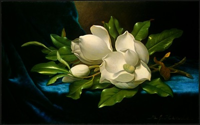 Giant-Magnolias-on-a-Blue-Velvet-Cloth-1890