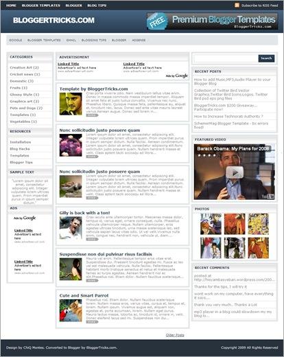 schemer-mag-template