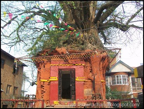Handigaon Krishna Temple (2)