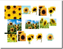 Sunflowers Sheet