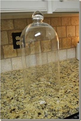 bell jar9
