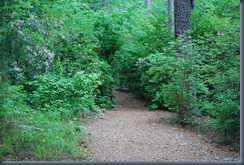 Meadowlark Gardens Trail