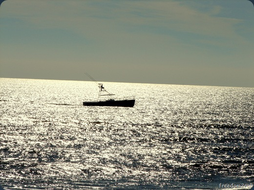 boat in the ocean[12]