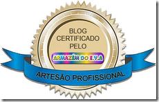 certificado artesão profissional
