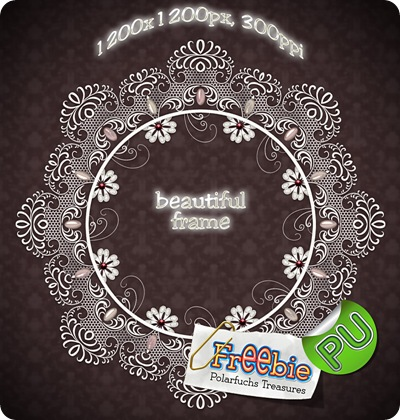 http://polarfuchs-treasures.blogspot.com/2009/07/freebie-pretty-lace-frame.html