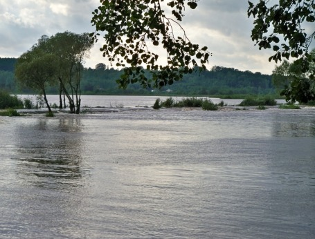 Rzeka Kamienna w Starachowicach