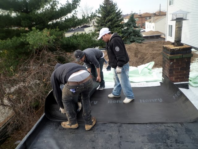 New York Green Roof Installation