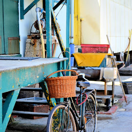 Le vélo by Heather Aplin - Transportation Bicycles ( oysters, basket, summer, france, french, bicycle )