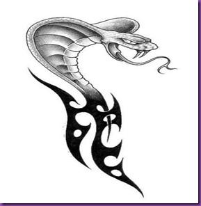 cobra-snake_001