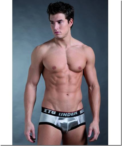 glitter-mens-brief-silver-grey-13327-11808
