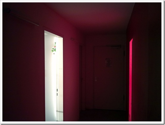 The Red Corridor