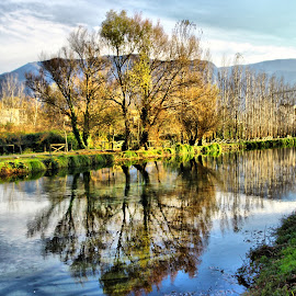 Reflections by Enzo Di Paola - City,  Street & Park  City Parks ( clouds, water, reflection, green, reflections, trees, landscape )