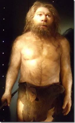 Neandertal - Museo de la Evolución Humana - Burgos